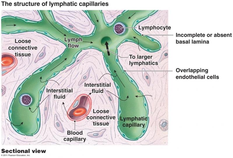 Klachten voor Manuele Lymfedrainage